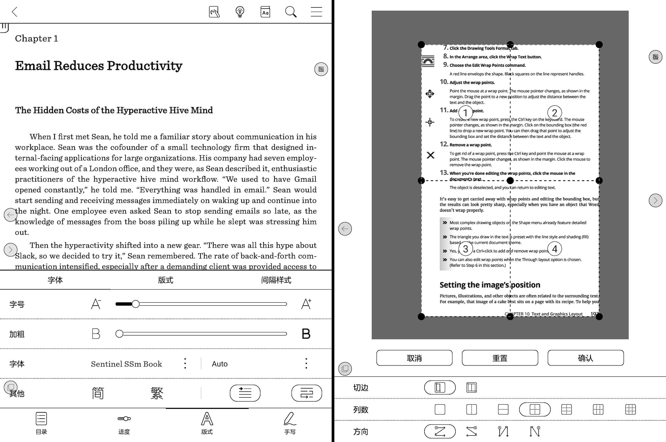 NeoReader 针对 EPUB 和 PDF 文件的排版选项